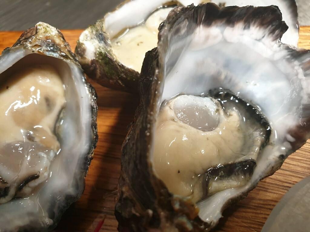oyster-friday.jpg
